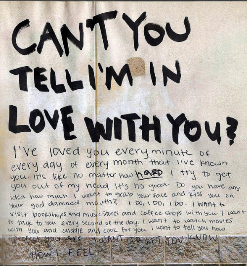 frowl:  this is so beautiful, if someone wrote me a love letter like this i would probably marry them in an instant