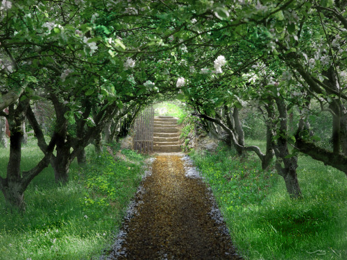 mykindafairytalee:  The Secret Garden by ~MistaBobby