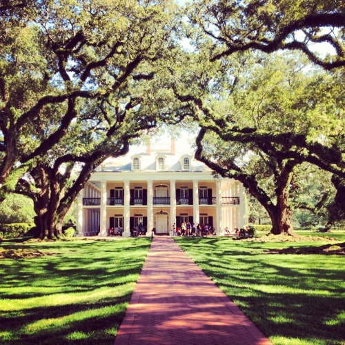 texasanchors:  Oak Alley Plantation in Louisiana. Hard not to fall in love with it