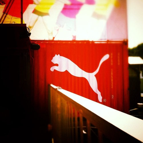 The Puma is near… #pumayard (Taken with Instagram)