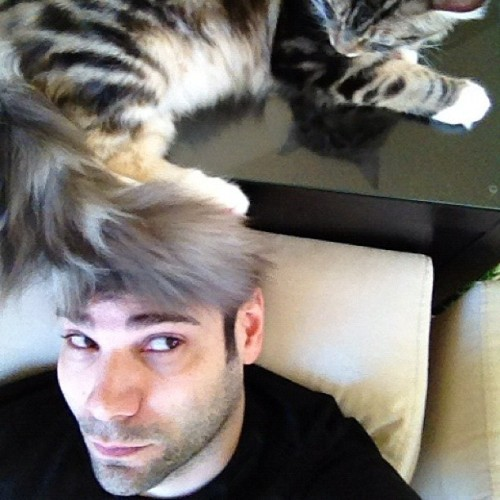 My hair often looks good because it's often cats. (Taken with Instagram)