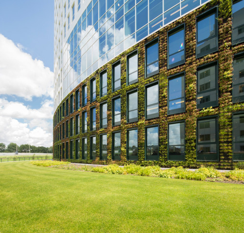 "olivegoldwine:  Wow!!! Living wall exterior. How dramatic and extremely welcoming.   From designboom: ""amsterdam-based firm hofman dujardin architects in collaboration with dutch firm fokkema & partners, have recently completed the 'eneco headquarter rotterdam' in the netherlands. exuding the company's vision of sustainability and energy, the building integrates solar power, natural illumination and an interior environment which is supplemented with fresh oxygen from the internal vegetation. a 14-storey office structure offers employees light-filled meeting center, work areas, lounges and restaurant. the south facade is surfaced with sun collectors to track the sun and absorb the maximum amount over the course of the day."""