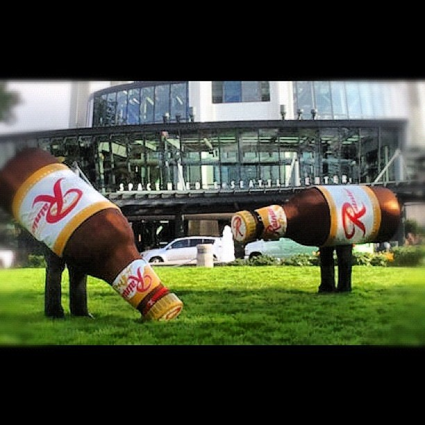 Remember these guys? Rainier Beer wants to bring them back!  http://kng5.tv/RainierR (Taken with Instagram)
