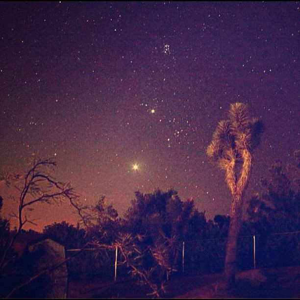 👽30 sec exposure on my Canon T3i. Shooting blindly in the dark and hoping it comes out good is so fun. I believe that's Mercury the brightest star, then Venus above it. Mars is to the right in the middle of the two. And an amazing star cluster at the very top. I love life. 💗 #joshuatree #longexposure #stars #galaxy #milkyway #mercury #venus #mars #starcluster #starseed #indigochildren #indigo  #universe #desert #trip #dreamworld #love #lifted #thankful for #earth #gods  (Taken with Instagram)