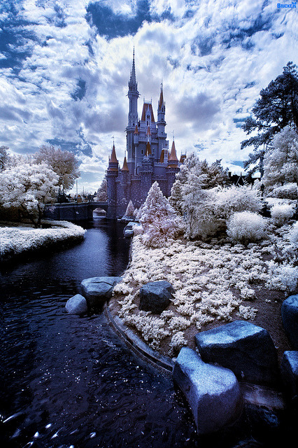 Walt Disney World Winter Wonderland? by Tom Bricker (WDWFigment) on Flickr.Via Flickr:Lake Buena Vista, Florida, USA Walt Disney World Resort Magic Kingdom Park Cinderella Castle as viewed from Tomorrowland Infrared image of Cinderella Castle taken with an infrared-converted Nikon D70. Red/blue channel swap performed. www.DisneyTouristBlog.com | Facebook |  Twitter | Purchase Prints | Camera Buying Guide