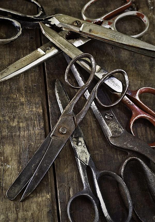 emrayfo:  Old scissors