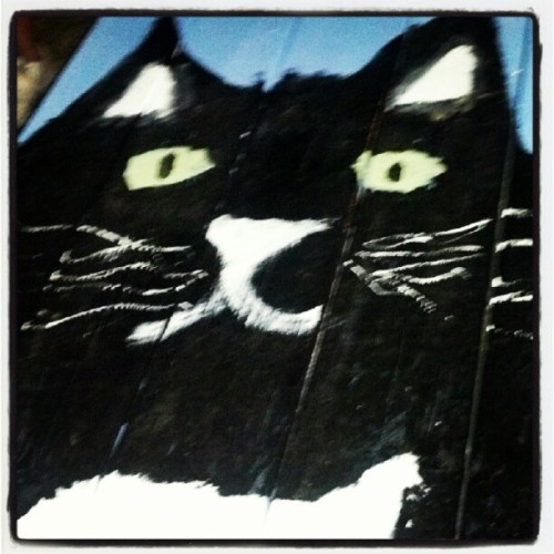 #kittycat #woodbridge #Detroit  (Taken with Instagram at Woodbridge Pub)