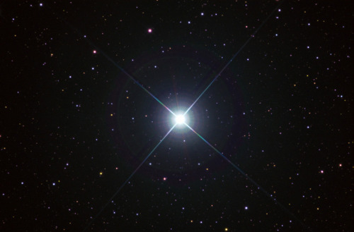 "At about 11 times larger than the sun and 40 times heavier, is Zeta Puppis, also known as Naos.  A young ""runaway star"" about 970 light-years away from the Sun, it is a spectral class type O5Ia luminous blue-white supergiant.  While only about 4 million years old, it has moved more than 400 light-years from where it formed in the Trumpler 10 cluster.  Its surface temperature is over 42,000°K, and including radiation at all frequencies, it is perhaps as much as 360,000 times more luminous than the sun.  If Zeta Puppis were to replace the sun, it is so large and so hot that Earth would need to be about 250 times further away than it is from the sun; 20 to 25 billion miles away.  Although young, it is already dying, and has started to fuse helium into carbon.  In about another 2 million years it will have become a huge red supergiant, probably more than 200 million miles across.  Soon after, it will explode in a supernova and become a neutron star or, if it retains sufficient mass, a black hole.  It spins on its axis about 100 times faster than the sun.   ( Source:Whillyard)"