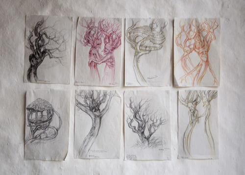 Tree drawings made at Lammas Eco Village
