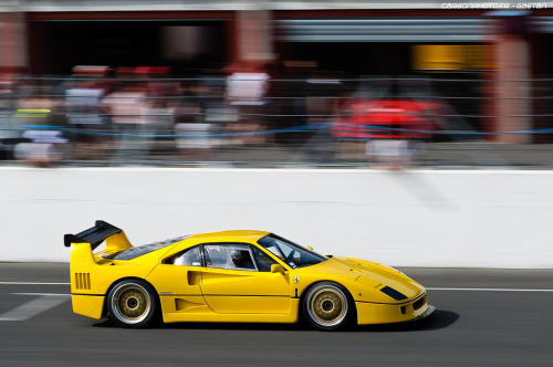 carpr0n:  Juicy Lemon Starring: Ferrari F40 (by Gaetan | www.carbonphoto.fr)