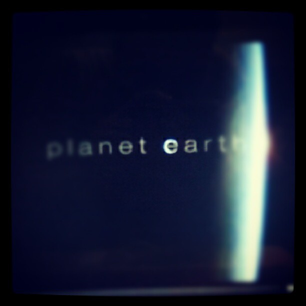 This rite now! #Zooted #PlanetEarth #BBC  (Taken with Instagram)