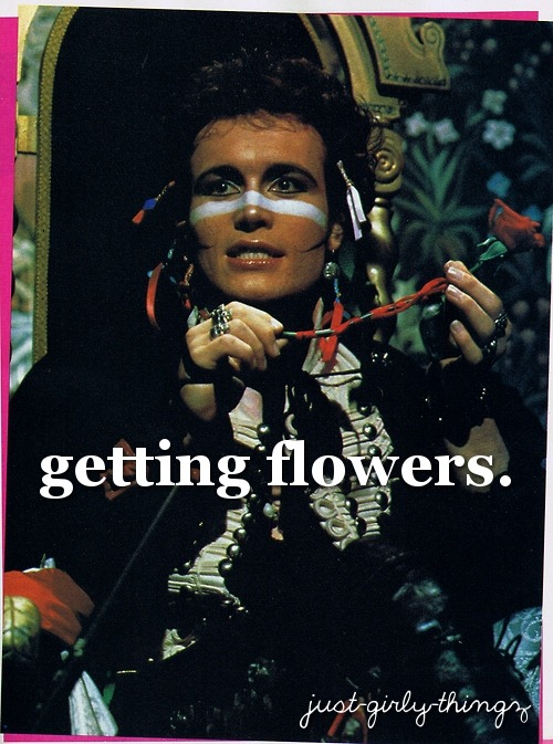 "just-girly-thingz:  [Adam Ant holding a rose, text ""getting flowers.""]"