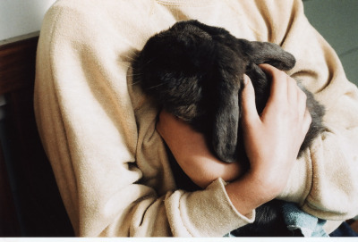 lovee-dust:  s-tuttered:  bunny (by Hannah Kessel)  ℓ