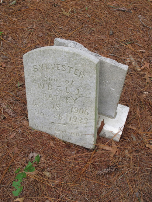 "Sylvester. Son of W.B. and L.J. Ratley ""Gone but not forgotten"""