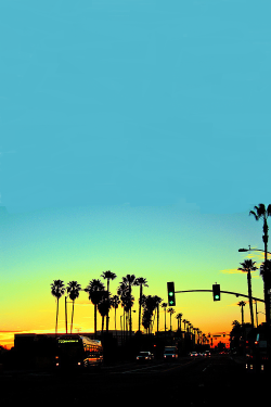 wastedalternativeyouth:  NYcWAS cali sunset