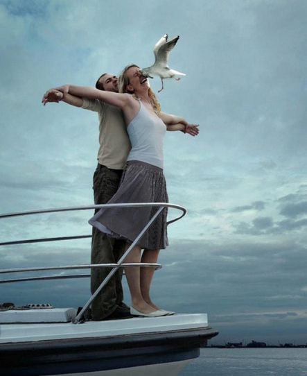 Seagull Runs into Titanic Re-Enactment You're not flying. This is flying!