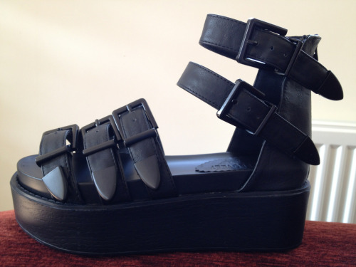 hollyharrold:  platform gladiators woo