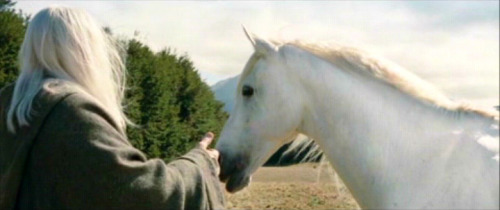 So like, if your name is Shadowfax, why are you white?