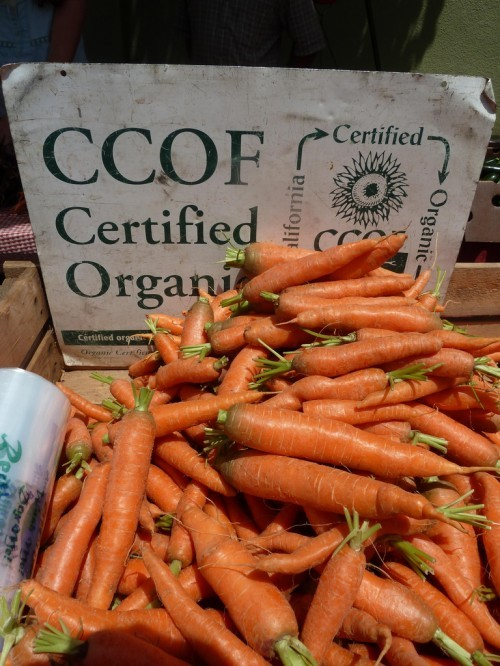 Six things to think about before you buy organic. ~ Jennifer Mo