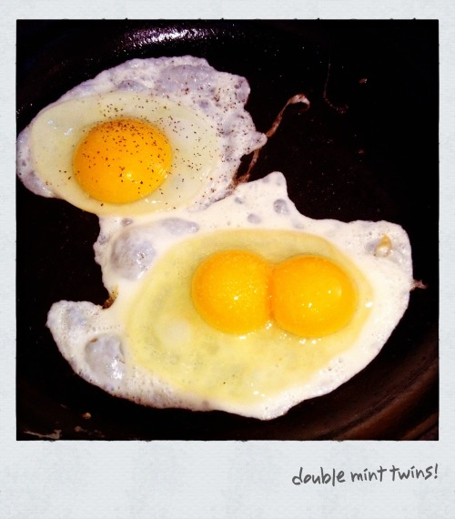 double the yolk, double the fun!!