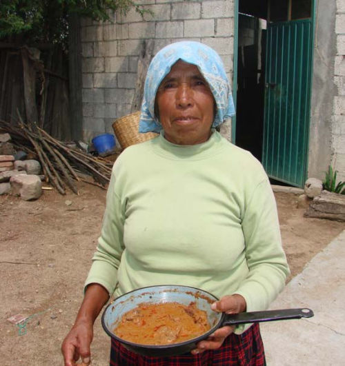 "Woman with traditional stew ""pipian de tlapitzal"" made with Gomphus floccosus; Photo by Amaranta Ramírez-Terrazo From: Women care about local knowledge, experiences from ethnomycology. Roberto Garibay-Orijel, Amaranta Ramírez-Terrazo and Marisa Ordaz-VelázquezJournal of Ethnobiology and Ethnomedicine 2012, 8:25 doi:10.1186/1746-4269-8-25 Published: 18 July 2012 (provisional)"