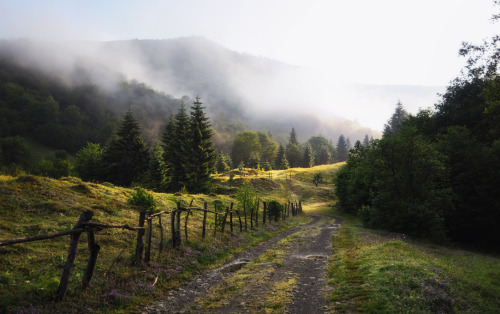 Through the Carpathians by Duru