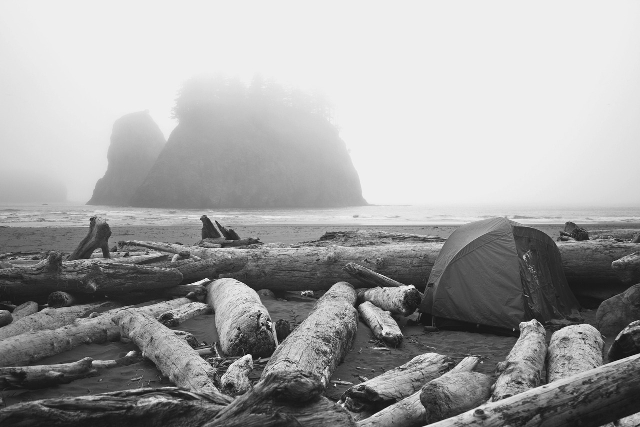 patagonia:  Camping on Second Beach in La Push, WA.