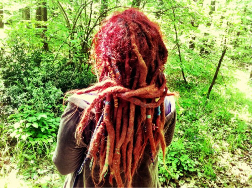 pinkmedusa.tumblr.com My dreadlings look like they belong in the forest..