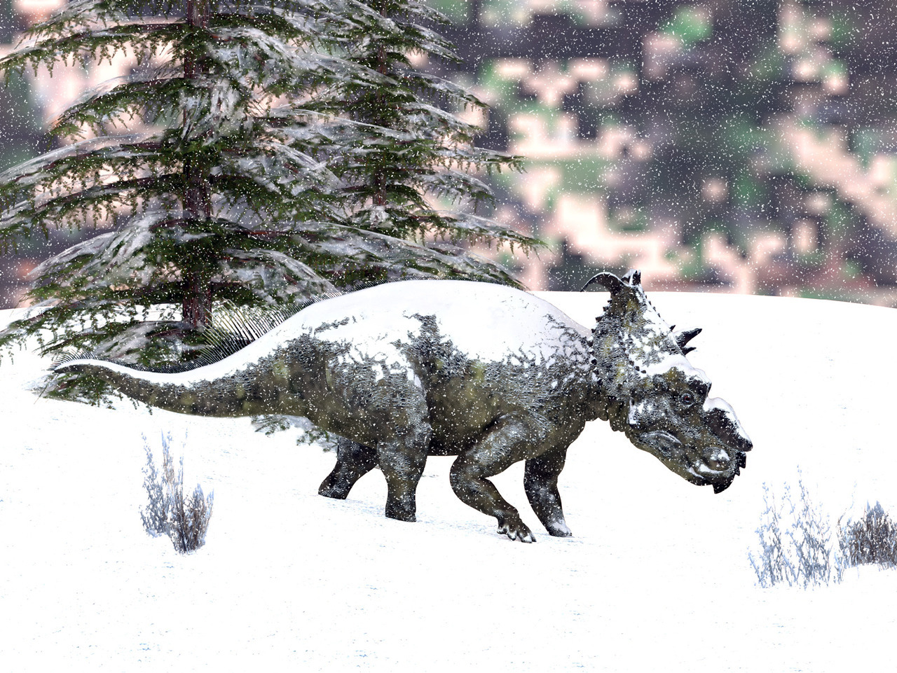 In the snow Pachyrhinosaurus Did arctic dinosaurs have to trudge through snow?  Maybe not often, but surely sometimes…