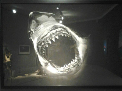 "Can you say 'jaws'? hyperallergic:  Robert Longo, ""Untitled (large black shark portrait)"" (2008), charcoal on paper (via Hunters or Hunted? Reckoning with Sharks)"