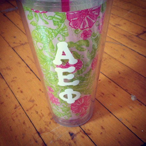 rollingontheriveroflove:  Staying cool with Lilly and AEPhi!