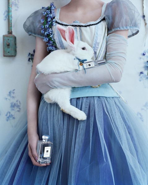 Wild Bluebell - Jo Malone Fragrance for Woman