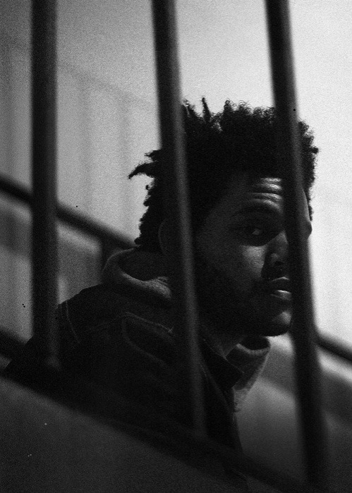getthatsnitch:  The Weeknd
