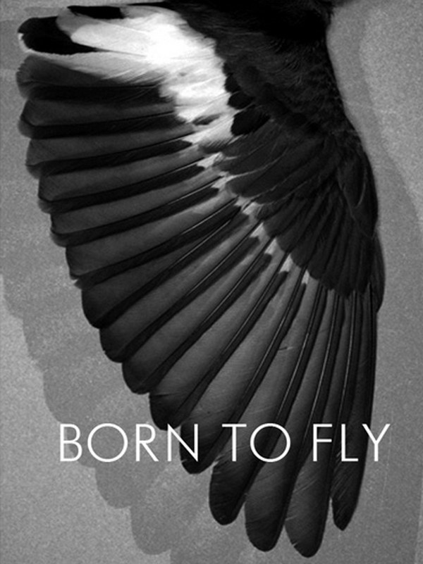 Born to Fly by Robert Grunenberg & Henning Strassburger