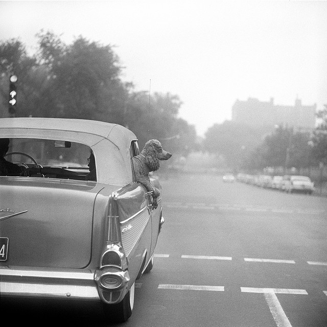 bygoneamericana:  Boston, 1958 By Nick DeWolf