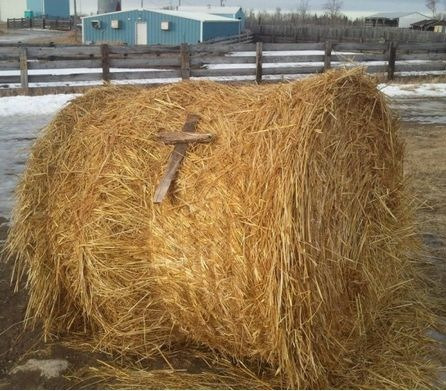 velarfricative:  My brother just sent me this pic and I didn't get it… and then he said it- Christian Bale