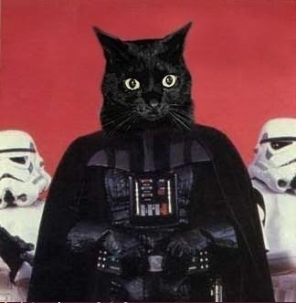 frontier001:  Meow the force be with you…  Darth Kitty rules.