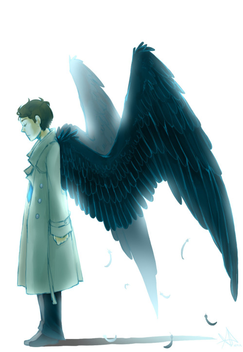 jkateel:  life-writer:  njkvsndvdlnfd I love drawing wings =w=  I'm going to show off my bird cred right now… A lot can be determined by a bird's wings aspect ratio. What type of wings you have determines what kind of flight you specialize in. Cas is usually drawn with high-aspect ratio wings, long and thin. Birds that have those types of wings specialize in long-distance soaring flight, e.g. albatrosses. I think it's poetic that Cas has these wings in fandom, that he's built for the long distances, spending months at the ocean (which is often violent), land only in sight every now and then. He has a long way to go before he gets home, but he's got the wings to handle the job. Annnnnnd, I'm done.
