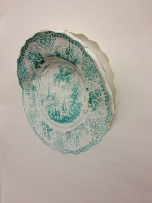 acorn:  Photo-plate of a plate III; Collaboration with Emily Diehl    Photo-plate collaboration with Lucia Thomé (III)