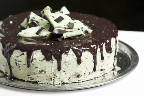 gastrogirl:  andes mint chocolate chip cake.