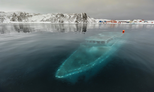 A Sunken Boat in the Antarctic Photograph by Ruslan Eliseev @ 35photo.ru   In this haunting image by Ruslan Eliseev, we see the sunken remains of the 76-ft Mar Sem Fin, a Brazillian boat that was used for scientific and educational expeditions. The boat, which sunk on April 7, 2012, lies at a depth of about 9 meters (30 ft) in Ardley Bay, Antarctica. Thankfully the crew was completely evacuated and nobody was hurt. For a blog post that documents the actual sinking of the ship, check out this blog (in Russian).