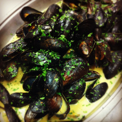 Thai green curry mussels. (ICE culinary class)