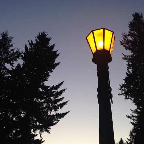 and the lights come on (Taken with Instagram at Top Of Mount Tabor)