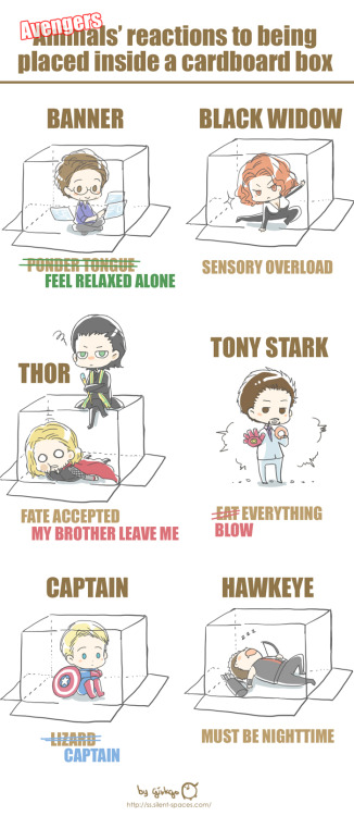 ssginkgo:  Avengers' reactions to being placed inside a cardboard box