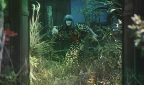 darkmylight:  Shuji Terayama - Grass Labyrinth, 1983