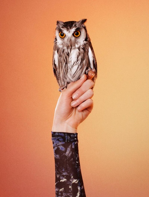Birds of Prey Edun fall 2012 campaign by Ryan McGinley