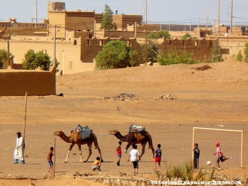Favourite photos: camels and football in the Sahara Desert #Morocco #travelView Postshared via WordPress.com