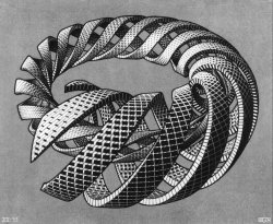 """Spirals"", 1953  By: M.C. ESCHER…."