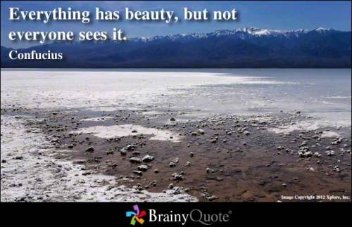 brainyquote:  Everything has beauty, but not everyone sees it. - Confucius