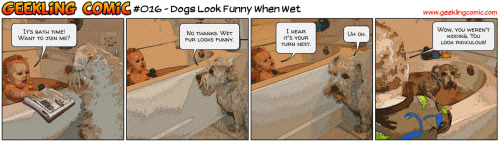 Winston wasn't kidding; dogs sure do look funny when they're wet! I almost didn't recognize my BFF on bath night. Who knew water would turn Winston into a drowned rat? Also, did you know that dogs go CRAZY when they get out of the bath? Bath time turned Winston into a supercharged ball of insane energy after he was toweled off; I couldn't keep up with him! It was sure fun trying, though. And I have to admit, it was nice to get the last laugh for a change.